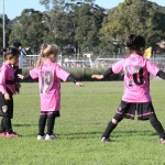 Broadmeadow Magic MiniRoos
